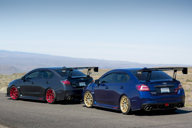 Rodger and Tara - The His and Hers STI's