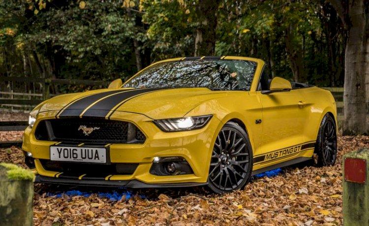 Shaun Black - 2016 Mustang GT 5.0 v8