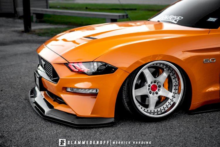 Alejandro Bahena  - 2018 Stanced Mustang GT