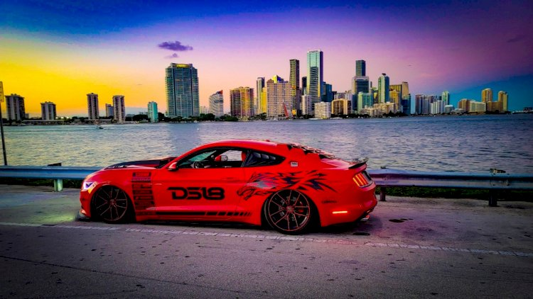 Diego Navarro - 2015 ford mustang 50-year edition